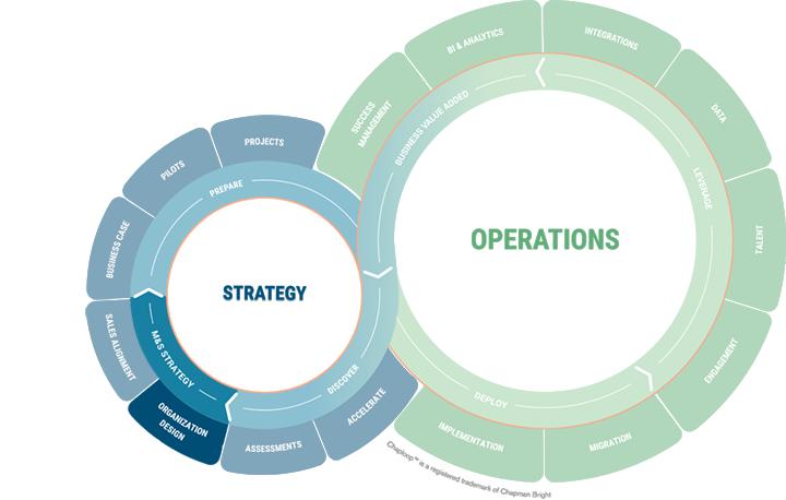 chaploopi-i-strategy-b-msstrategy-1-organization-design